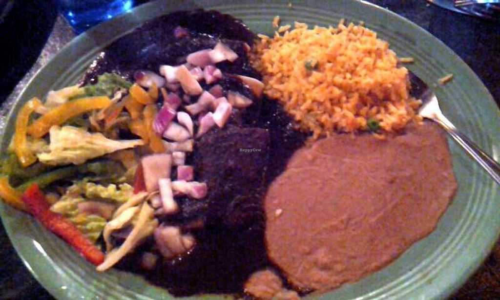 Photo of Blue Iguana  by Navegante <br/>Bean enchiladas plate <br/> May 23, 2014  - <a href='/contact/abuse/image/36363/70566'>Report</a>