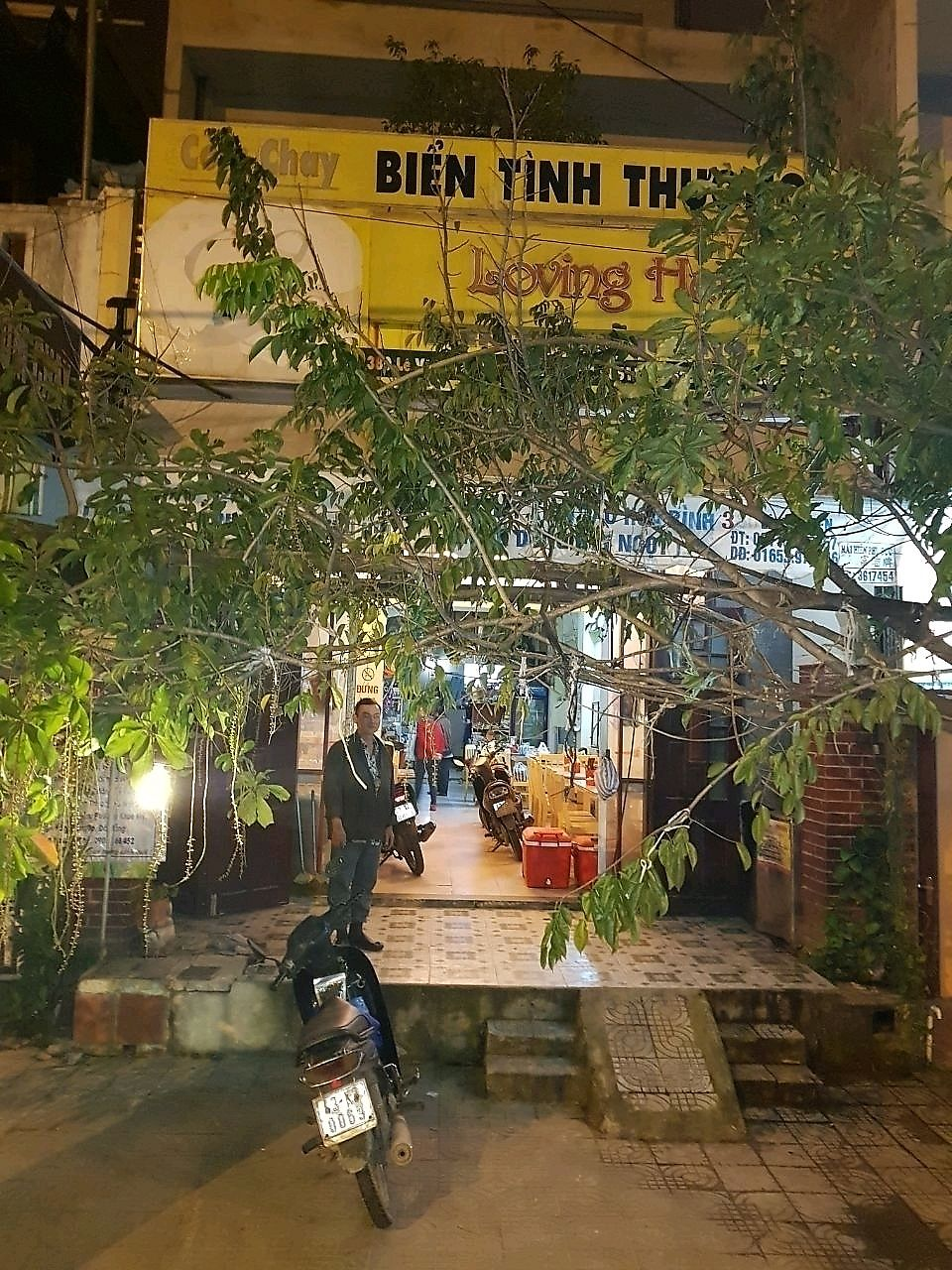 """Photo of Loving Hut - Bien Tinh Thuong  by <a href=""""/members/profile/EnricoVegan"""">EnricoVegan</a> <br/>loving hut store front is covered by huge tree <br/> December 21, 2017  - <a href='/contact/abuse/image/36503/337688'>Report</a>"""