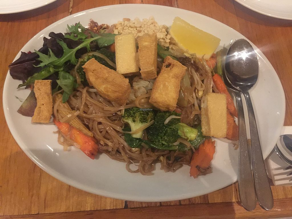 """Photo of Penn Thai  by <a href=""""/members/profile/Tiggy"""">Tiggy</a> <br/>Vegan Pad Thai <br/> September 21, 2017  - <a href='/contact/abuse/image/36528/306652'>Report</a>"""
