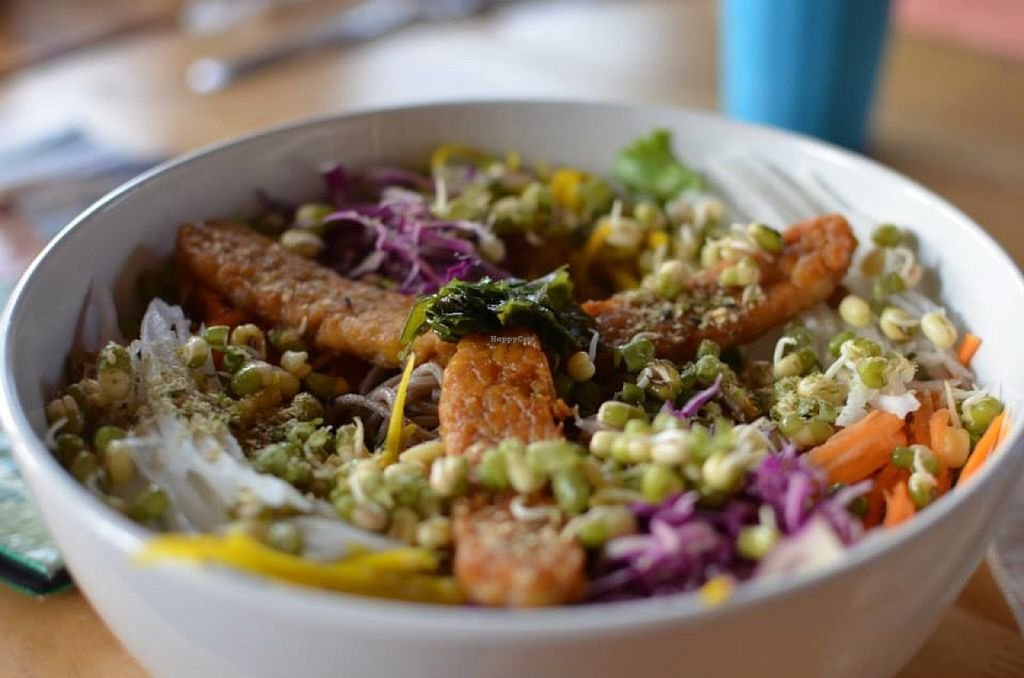 """Photo of Orion Cafe  by <a href=""""/members/profile/alicus"""">alicus</a> <br/>The absolutely enormous and equally delicious Buddha Bowl. Yay Tempeh!  <br/> June 16, 2016  - <a href='/contact/abuse/image/36552/154183'>Report</a>"""