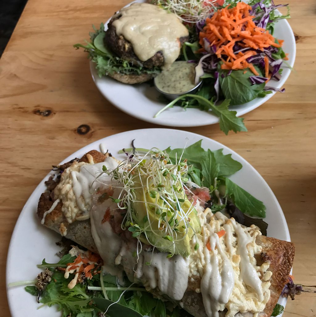 "Photo of Superfresh Organic Cafe  by <a href=""/members/profile/JamieElder"">JamieElder</a> <br/>Burrito and Mushroom Burger!  <br/> May 4, 2017  - <a href='/contact/abuse/image/36615/255610'>Report</a>"