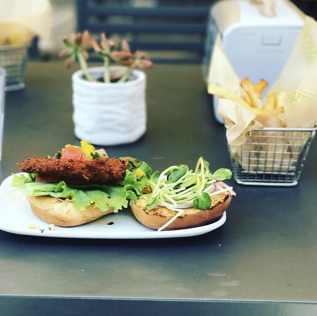 """Photo of Green Bar and Kitchen  by <a href=""""/members/profile/NyasiaJenkins"""">NyasiaJenkins</a> <br/>Coconut Burger  <br/> August 4, 2017  - <a href='/contact/abuse/image/36631/288703'>Report</a>"""