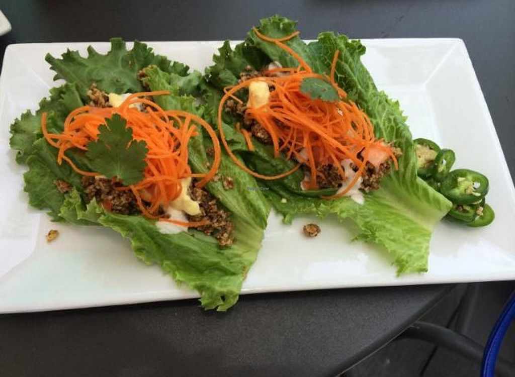 """Photo of Green Bar and Kitchen  by <a href=""""/members/profile/kmilitello"""">kmilitello</a> <br/>raw tacos <br/> June 1, 2014  - <a href='/contact/abuse/image/36631/71212'>Report</a>"""