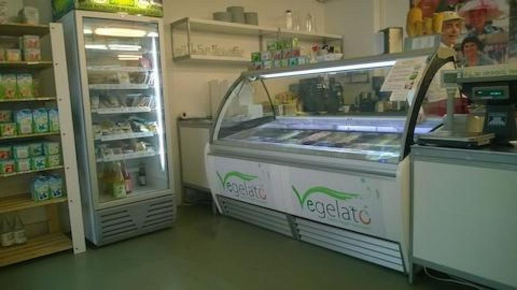 """Photo of Vegelateria  by <a href=""""/members/profile/zroq12"""">zroq12</a> <br/>Vegelateria <br/> October 1, 2014  - <a href='/contact/abuse/image/36683/81813'>Report</a>"""