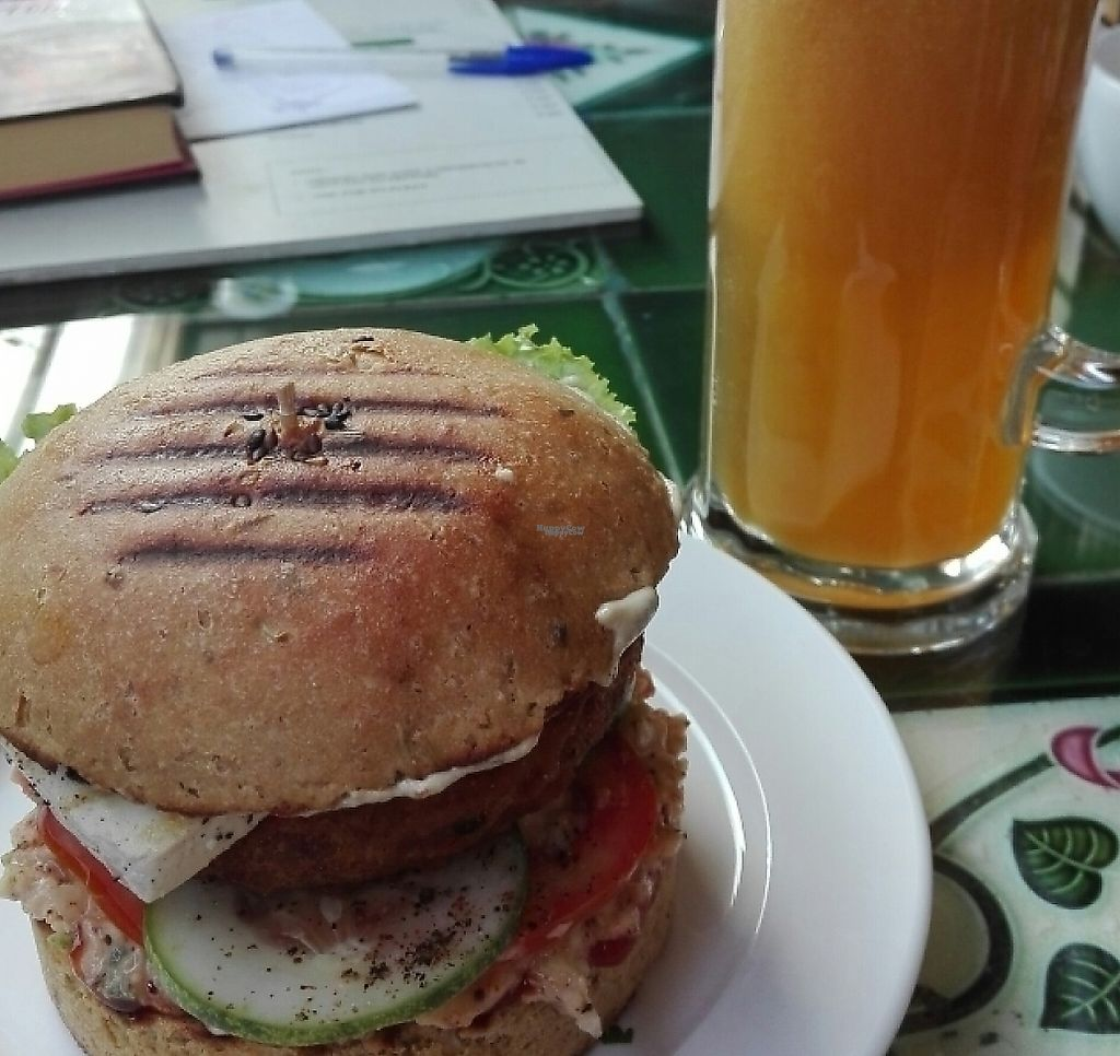 "Photo of Carrots  by <a href=""/members/profile/TamaraSteiner"">TamaraSteiner</a> <br/>Tofu Burger with fresh Apple Juice <br/> November 25, 2016  - <a href='/contact/abuse/image/36713/265301'>Report</a>"