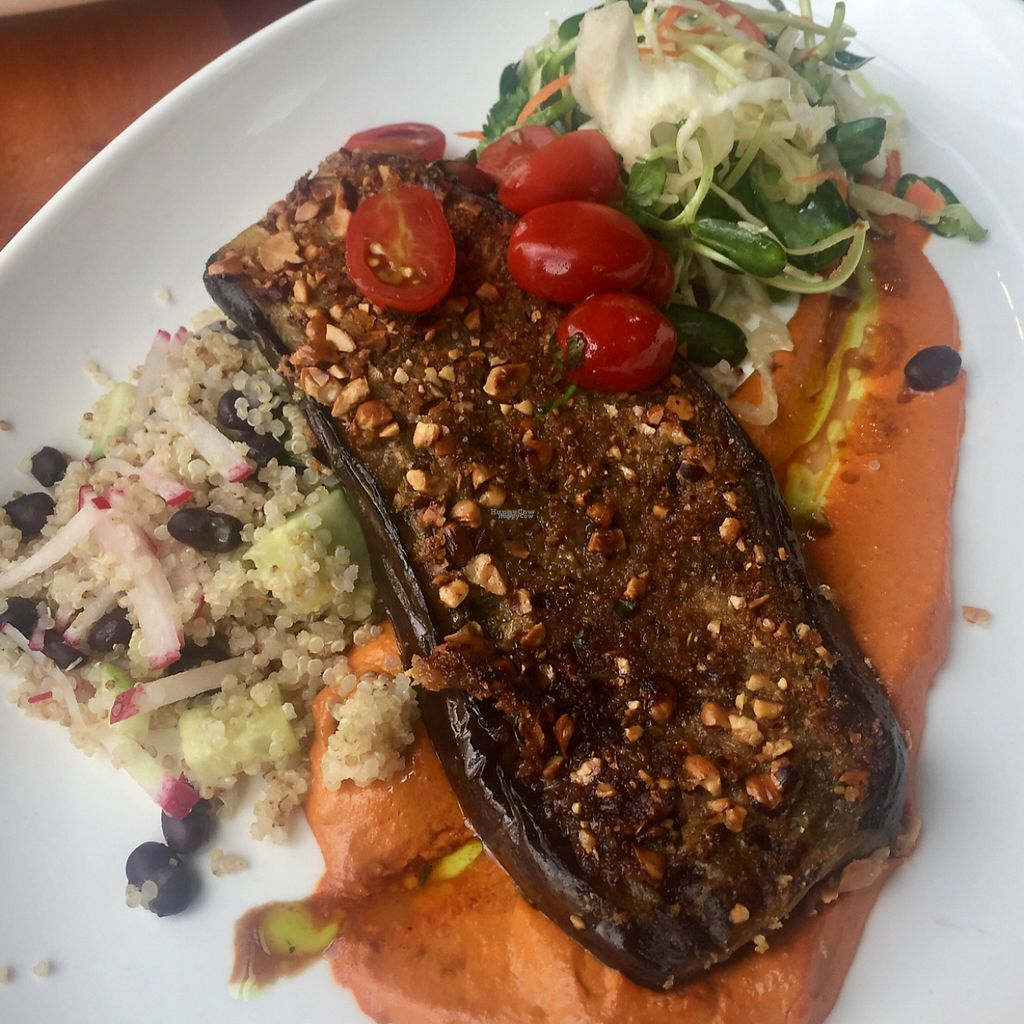 """Photo of Reposado  by <a href=""""/members/profile/VegAnne_Ca"""">VegAnne_Ca</a> <br/>vegan eggplant plate - amazzzze <br/> March 4, 2017  - <a href='/contact/abuse/image/36762/232650'>Report</a>"""