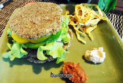 """Photo of Atsumi Raw Cafe  by <a href=""""/members/profile/VeganAngels"""">VeganAngels</a> <br/>Raw Burger and Raw Fries - Yummy <br/> February 8, 2013  - <a href='/contact/abuse/image/36812/43994'>Report</a>"""