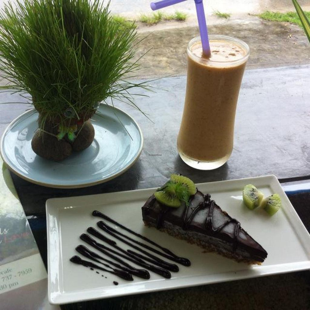 """Photo of Atsumi Raw Cafe  by <a href=""""/members/profile/Smoothie%20Raw"""">Smoothie Raw</a> <br/>delusions  <br/> November 2, 2014  - <a href='/contact/abuse/image/36812/84449'>Report</a>"""
