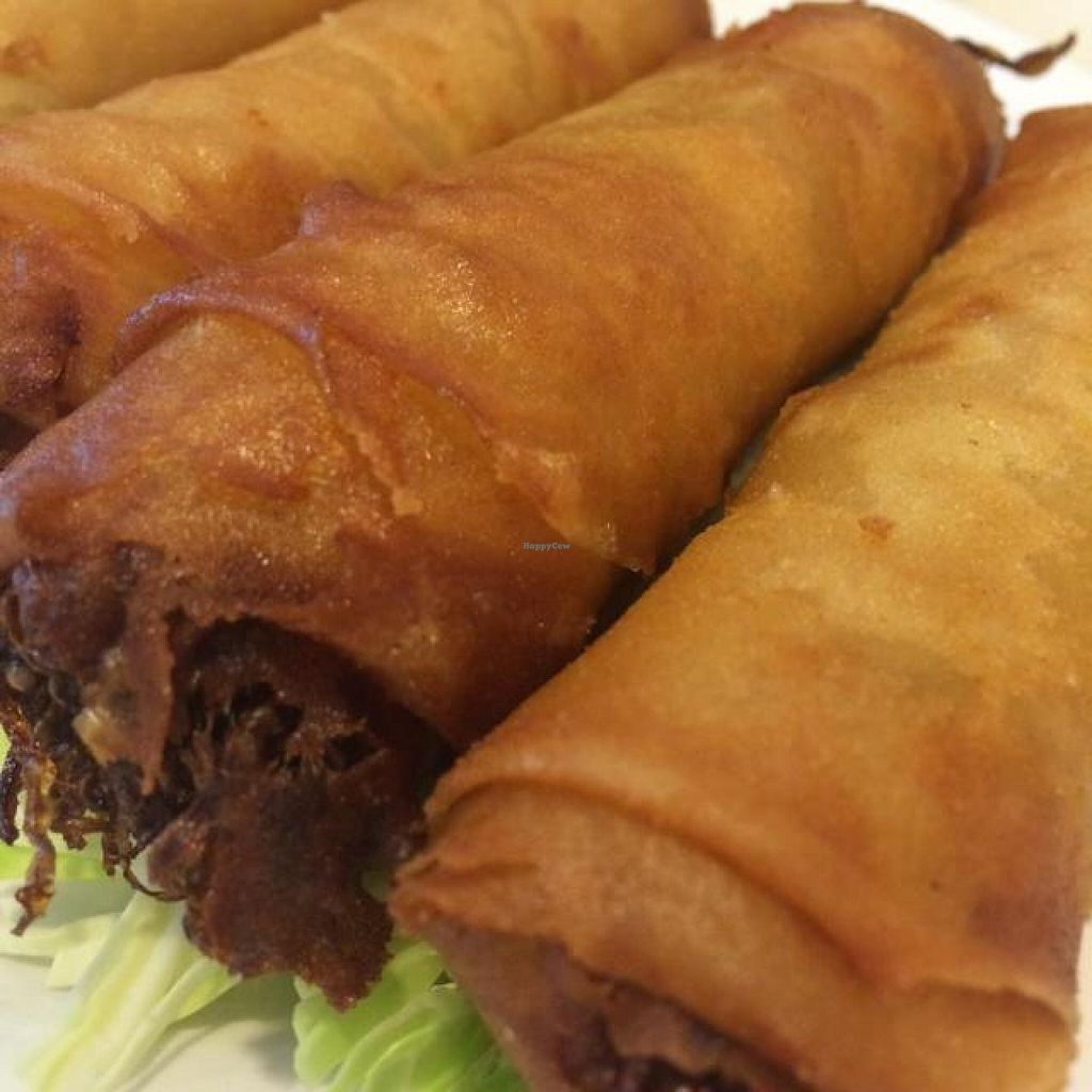 """Photo of Bodhi Veggie Cuisine  by <a href=""""/members/profile/HappyVeggieDude"""">HappyVeggieDude</a> <br/>'egg' roll <br/> September 12, 2014  - <a href='/contact/abuse/image/36911/79734'>Report</a>"""