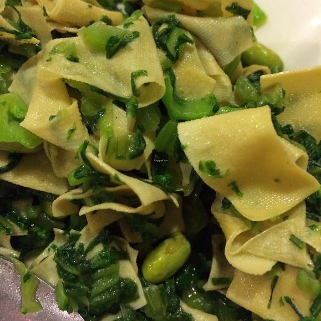 """Photo of Bodhi Veggie Cuisine  by <a href=""""/members/profile/HappyVeggieDude"""">HappyVeggieDude</a> <br/>spinach and noodle <br/> September 12, 2014  - <a href='/contact/abuse/image/36911/79736'>Report</a>"""