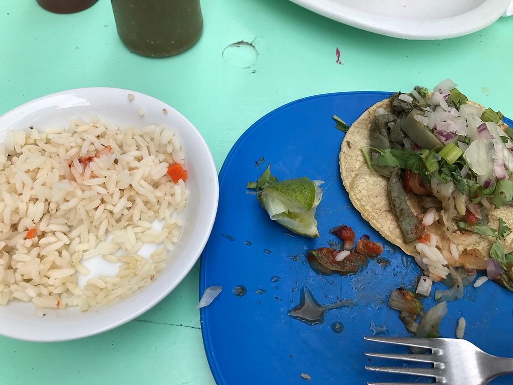 """Photo of Chaparro  by <a href=""""/members/profile/DanielleNau"""">DanielleNau</a> <br/>Cactus tacos! Different but tasty  <br/> August 14, 2017  - <a href='/contact/abuse/image/36944/292723'>Report</a>"""