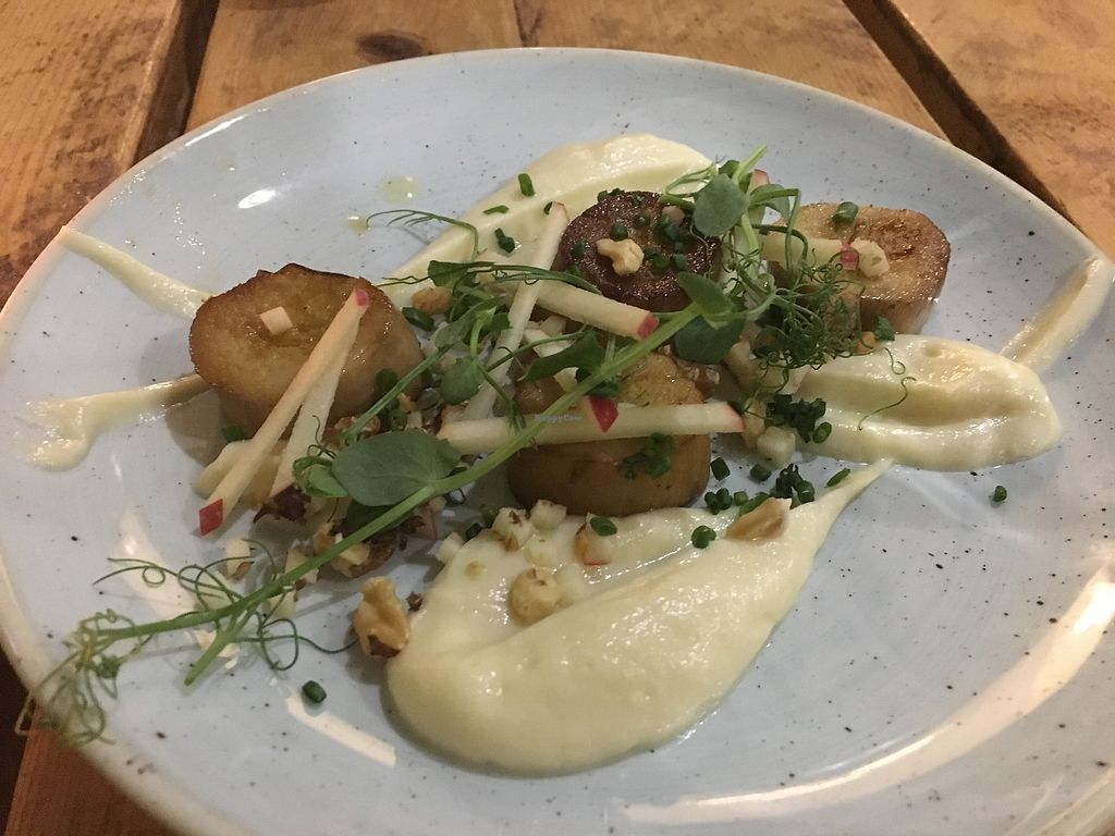 "Photo of The Green Rocket Cafe  by <a href=""/members/profile/alice28"">alice28</a> <br/>Oyster mushroom scallops <br/> March 1, 2018  - <a href='/contact/abuse/image/36987/365376'>Report</a>"