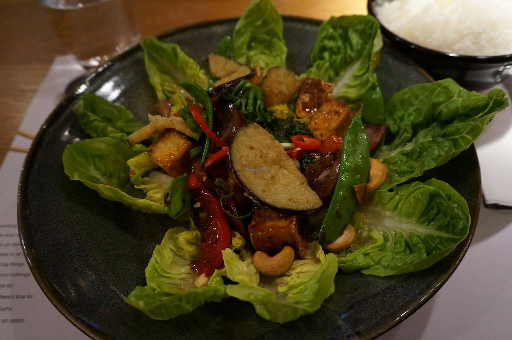 "Photo of Wagamama   by <a href=""/members/profile/Ricardo"">Ricardo</a> <br/>Warm Chili Tofu Salad (vegan) <br/> May 18, 2016  - <a href='/contact/abuse/image/36989/149702'>Report</a>"