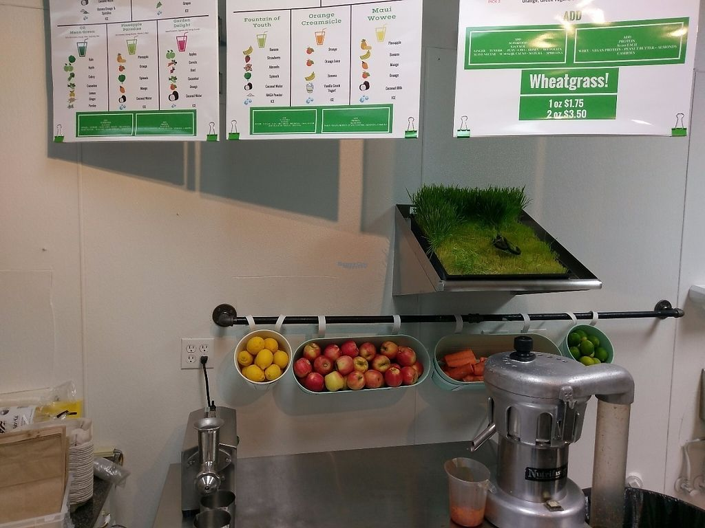 """Photo of Nutrition Shoppe Juice and Sandwich Bar  by <a href=""""/members/profile/Ricks"""">Ricks</a> <br/>Organic wheatgrass <br/> April 9, 2017  - <a href='/contact/abuse/image/37007/246268'>Report</a>"""