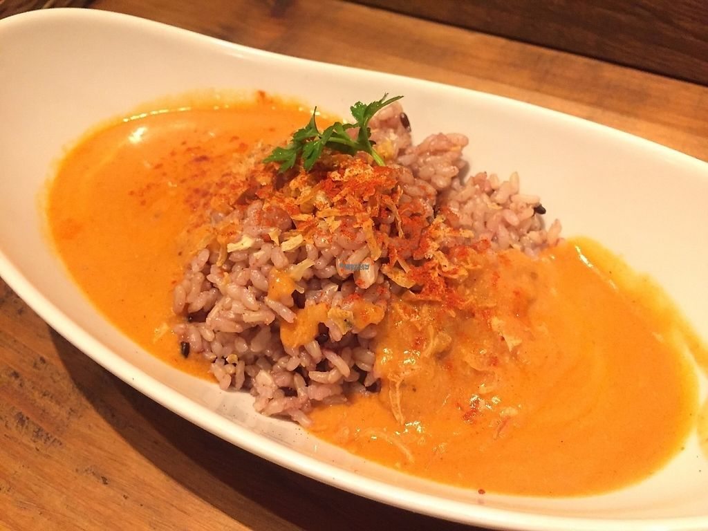 """Photo of RiR Organic Plus Greens  by <a href=""""/members/profile/SamanthaIngridHo"""">SamanthaIngridHo</a> <br/>Tomato curry with rice <br/> March 17, 2017  - <a href='/contact/abuse/image/37034/237491'>Report</a>"""