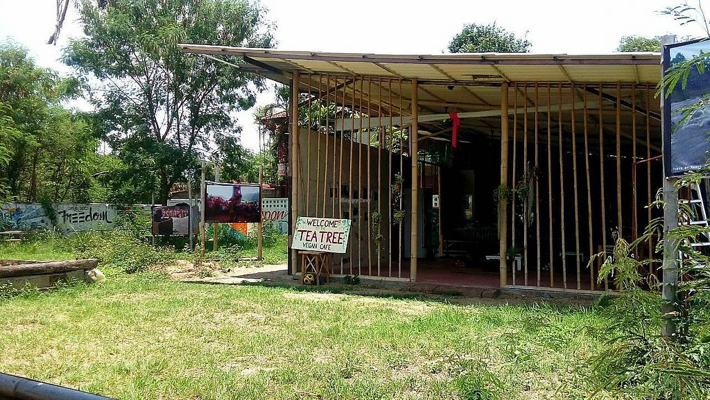 """Photo of CLOSED: The Tea Tree Cafe  by <a href=""""/members/profile/EarthlinTrin"""">EarthlinTrin</a> <br/>Outside the restaurant <br/> May 23, 2017  - <a href='/contact/abuse/image/37169/261627'>Report</a>"""