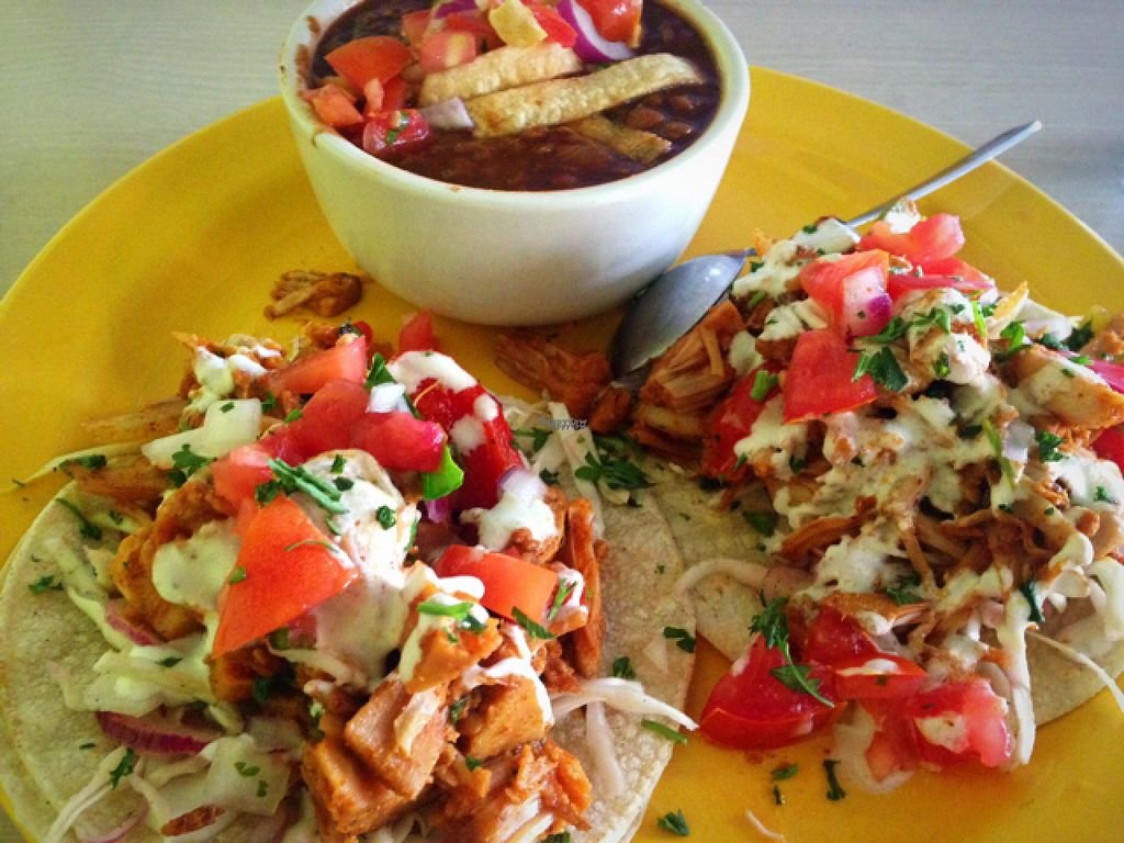 """Photo of Senor Veggie  by <a href=""""/members/profile/RunningWithWyatt"""">RunningWithWyatt</a> <br/>Jackfruit street tacos with lentil chili <br/> August 17, 2016  - <a href='/contact/abuse/image/37190/169551'>Report</a>"""