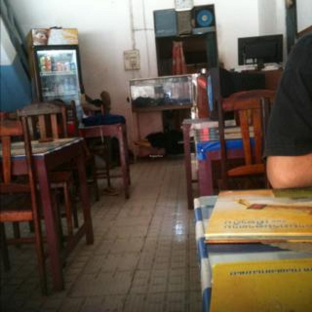 "Photo of Nisha Restaurant  by <a href=""/members/profile/walkingvegan"">walkingvegan</a> <br/>inside the restaurant <br/> July 23, 2014  - <a href='/contact/abuse/image/37229/74867'>Report</a>"