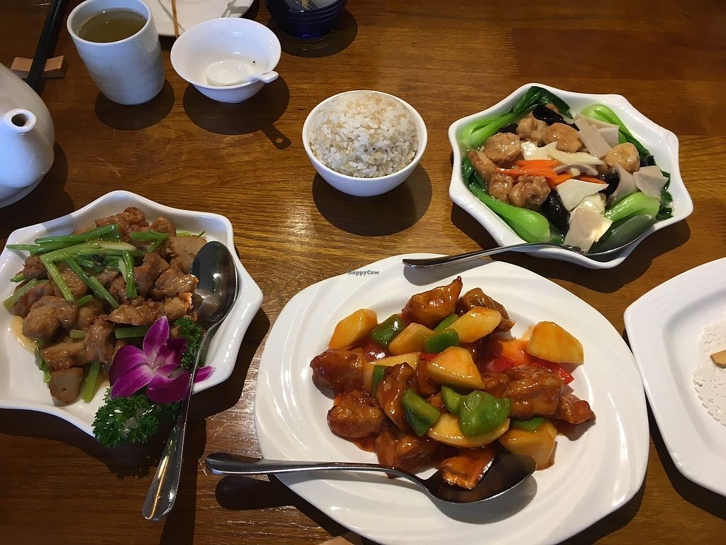 """Photo of Vegetarian Garden  by <a href=""""/members/profile/Stevia"""">Stevia</a> <br/>Complete meal <br/> February 1, 2018  - <a href='/contact/abuse/image/37272/353436'>Report</a>"""