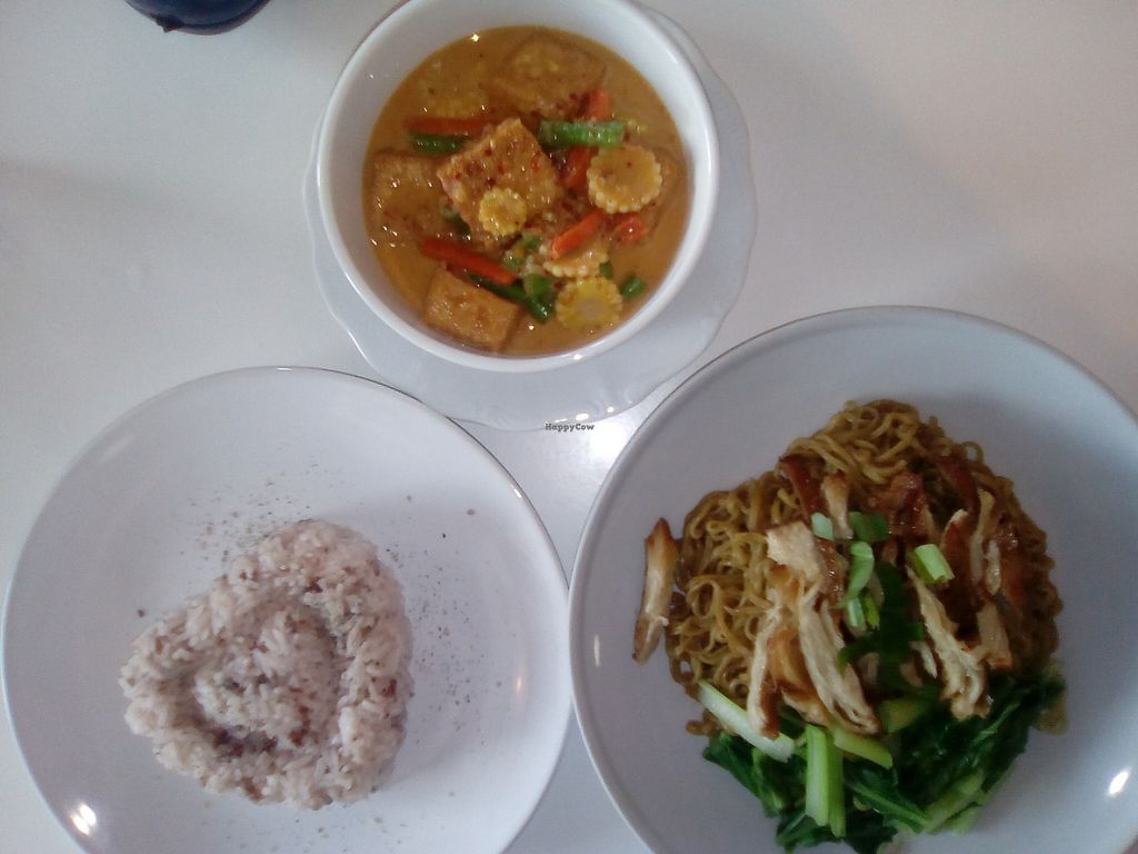 """Photo of Loving Hut  by <a href=""""/members/profile/brendancullen"""">brendancullen</a> <br/>Rice, Massaman Curry <br/> May 13, 2017  - <a href='/contact/abuse/image/37341/258452'>Report</a>"""