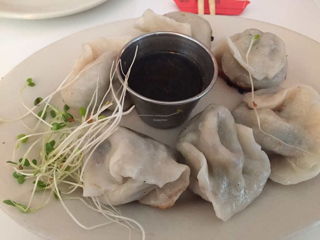 """Photo of Peacefood Cafe - Downtown  by <a href=""""/members/profile/Karenk"""">Karenk</a> <br/>Dumplings - fresh and authentic - pan seared on the bottom <br/> August 11, 2015  - <a href='/contact/abuse/image/37453/113221'>Report</a>"""