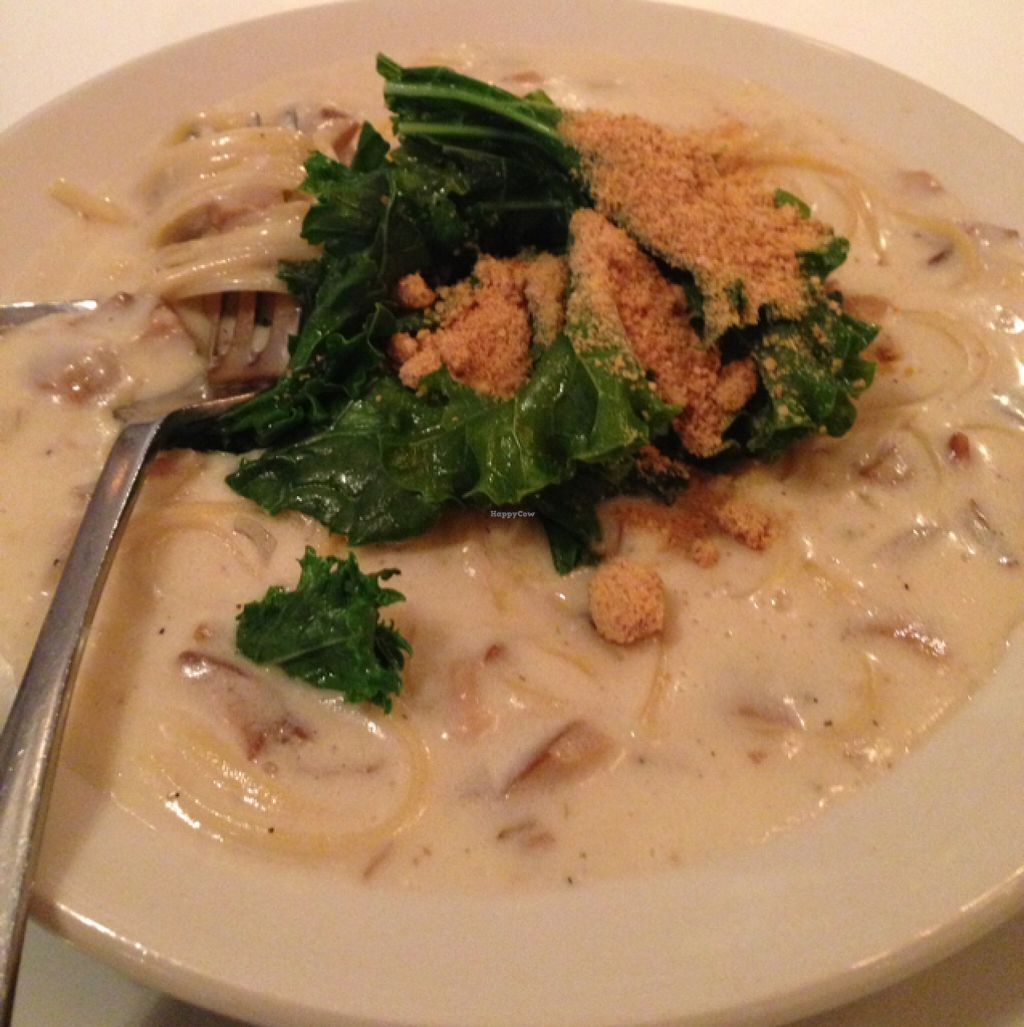 """Photo of Peacefood Cafe - Downtown  by <a href=""""/members/profile/slo0go"""">slo0go</a> <br/>linguine clam sauce <br/> July 21, 2016  - <a href='/contact/abuse/image/37453/161453'>Report</a>"""