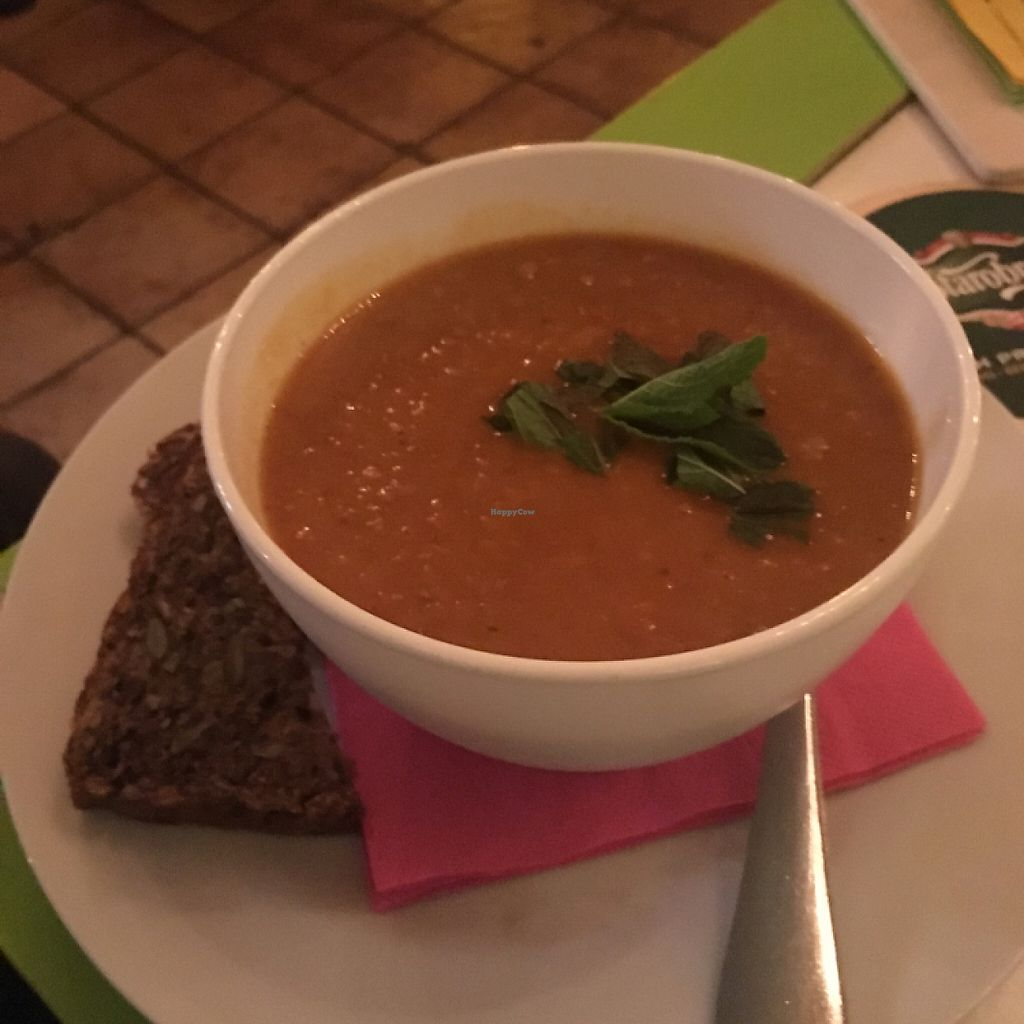 """Photo of Harvest Cafe Bistrot  by <a href=""""/members/profile/KimMartin"""">KimMartin</a> <br/>Lentil Soup <br/> May 24, 2017  - <a href='/contact/abuse/image/37469/262194'>Report</a>"""