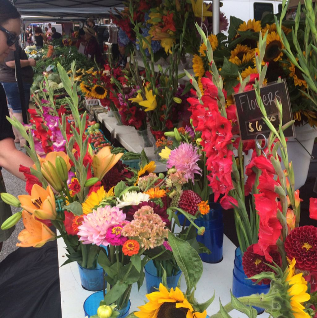 """Photo of Farmers Market  by <a href=""""/members/profile/sarahbethcory"""">sarahbethcory</a> <br/>Farmer's Market Flowers! <br/> July 6, 2016  - <a href='/contact/abuse/image/3751/158194'>Report</a>"""