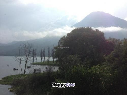 """Photo of Las Lagartijas  by <a href=""""/members/profile/Fixation"""">Fixation</a> <br/>Lake Atitlan <br/> August 14, 2013  - <a href='/contact/abuse/image/37552/53271'>Report</a>"""