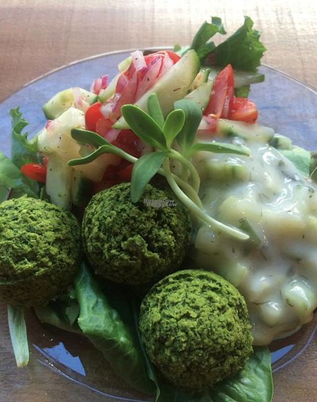 "Photo of The Green Eatery  by <a href=""/members/profile/Anna-Marie"">Anna-Marie</a> <br/>Falafels - served with tzatziki and salsa <br/> October 28, 2016  - <a href='/contact/abuse/image/37561/184981'>Report</a>"