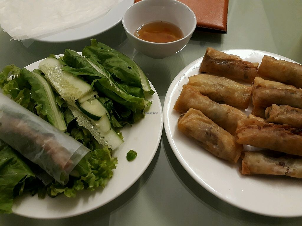 """Photo of Karma Waters Restaurant & Hostel  by <a href=""""/members/profile/LilacHippy"""">LilacHippy</a> <br/>Fried spring rolls <br/> December 26, 2017  - <a href='/contact/abuse/image/37573/339131'>Report</a>"""
