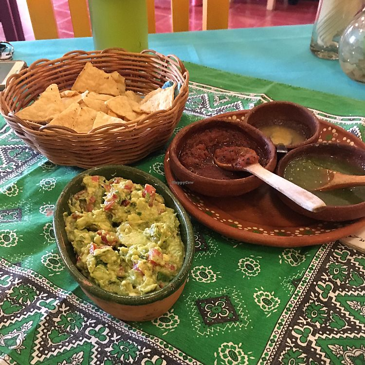 """Photo of Yerbabuena del Sisal  by <a href=""""/members/profile/Kukiaries"""">Kukiaries</a> <br/>guacamole <br/> June 15, 2017  - <a href='/contact/abuse/image/37576/269535'>Report</a>"""