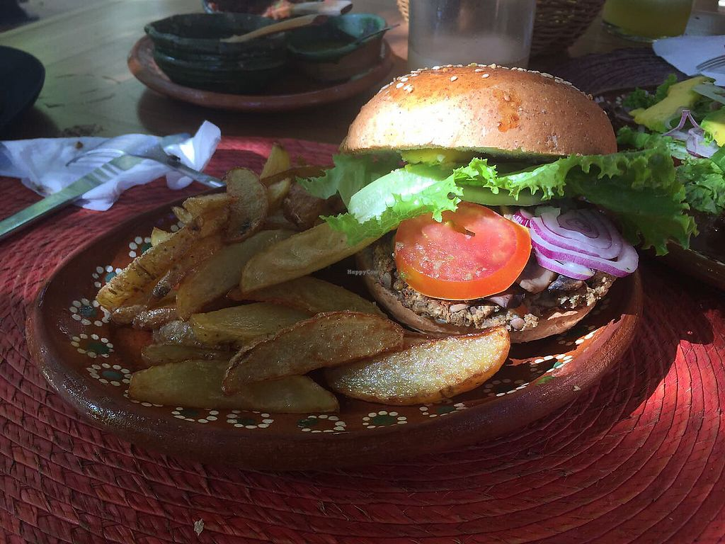"""Photo of Yerbabuena del Sisal  by <a href=""""/members/profile/Sonnus"""">Sonnus</a> <br/>hamburger vegan with fries <br/> August 11, 2017  - <a href='/contact/abuse/image/37576/291550'>Report</a>"""