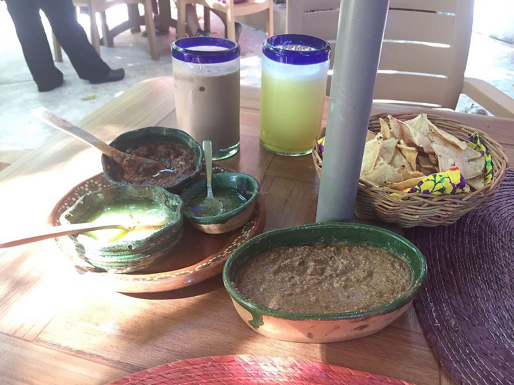 """Photo of Yerbabuena del Sisal  by <a href=""""/members/profile/Sonnus"""">Sonnus</a> <br/>Dip from Yucatan and free salsas and tacos  <br/> August 11, 2017  - <a href='/contact/abuse/image/37576/291552'>Report</a>"""