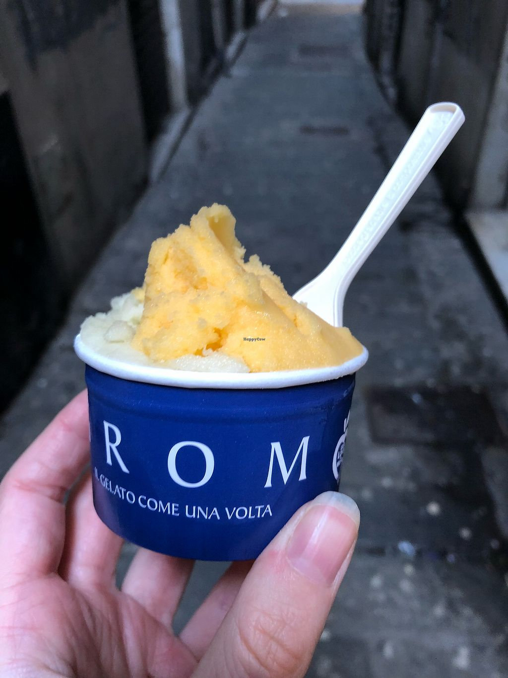 "Photo of Grom - San Lorenzo  by <a href=""/members/profile/_hael"">_hael</a> <br/>Apple & Mandarin Gelato <br/> February 16, 2018  - <a href='/contact/abuse/image/37629/360047'>Report</a>"