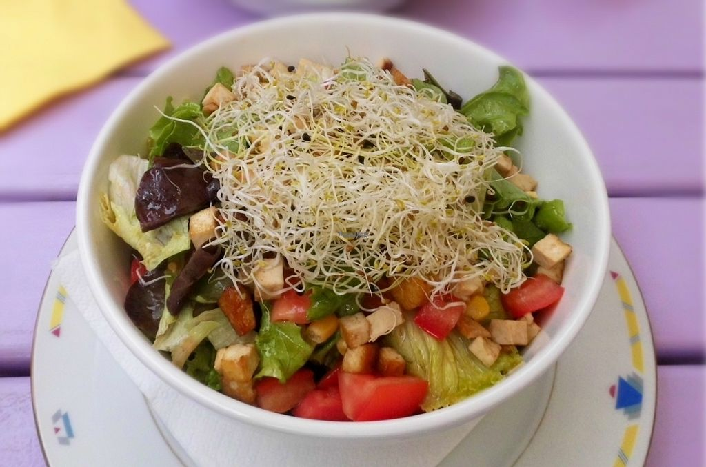 """Photo of Artha  by <a href=""""/members/profile/Ankeunterwegs"""">Ankeunterwegs</a> <br/>Mixed Salad with tofu <br/> September 10, 2016  - <a href='/contact/abuse/image/37653/174815'>Report</a>"""