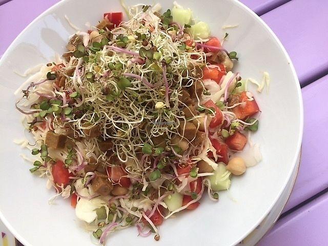 "Photo of Artha  by <a href=""/members/profile/NeleG"">NeleG</a> <br/>Salad seitan <br/> September 2, 2017  - <a href='/contact/abuse/image/37653/300151'>Report</a>"