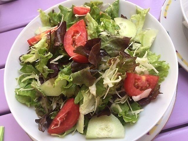 "Photo of Artha  by <a href=""/members/profile/NeleG"">NeleG</a> <br/>Seasonal salad <br/> September 2, 2017  - <a href='/contact/abuse/image/37653/300153'>Report</a>"