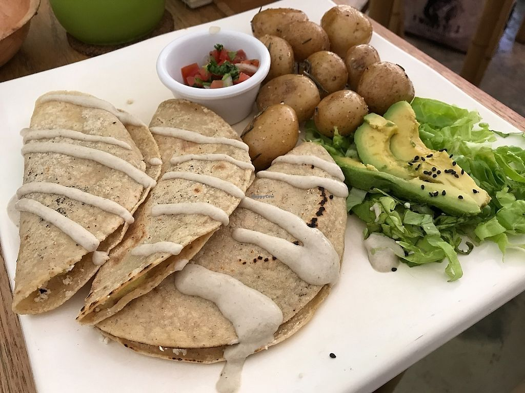 "Photo of La Senda Restaurante  by <a href=""/members/profile/EvelisseCap%C3%B3"">EvelisseCapó</a> <br/>Tacos with papas cambray <br/> May 29, 2017  - <a href='/contact/abuse/image/37678/263953'>Report</a>"