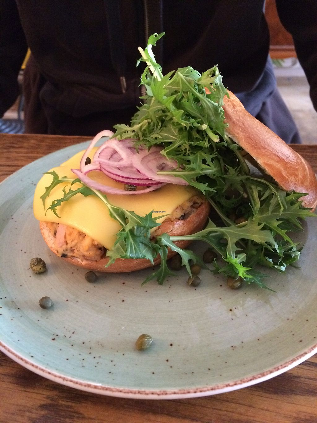 "Photo of DopHert  by <a href=""/members/profile/ValVeg"">ValVeg</a> <br/>No-tuna bagel with cheese <br/> March 3, 2018  - <a href='/contact/abuse/image/37702/366300'>Report</a>"