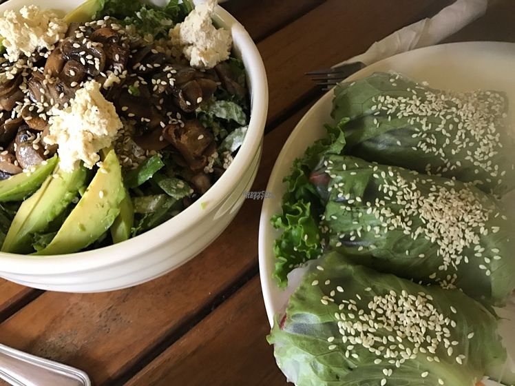 "Photo of Luv Burger  by <a href=""/members/profile/stardustie"">stardustie</a> <br/>Goddess Bowl & Summer Rolls <br/> October 23, 2016  - <a href='/contact/abuse/image/37854/183784'>Report</a>"