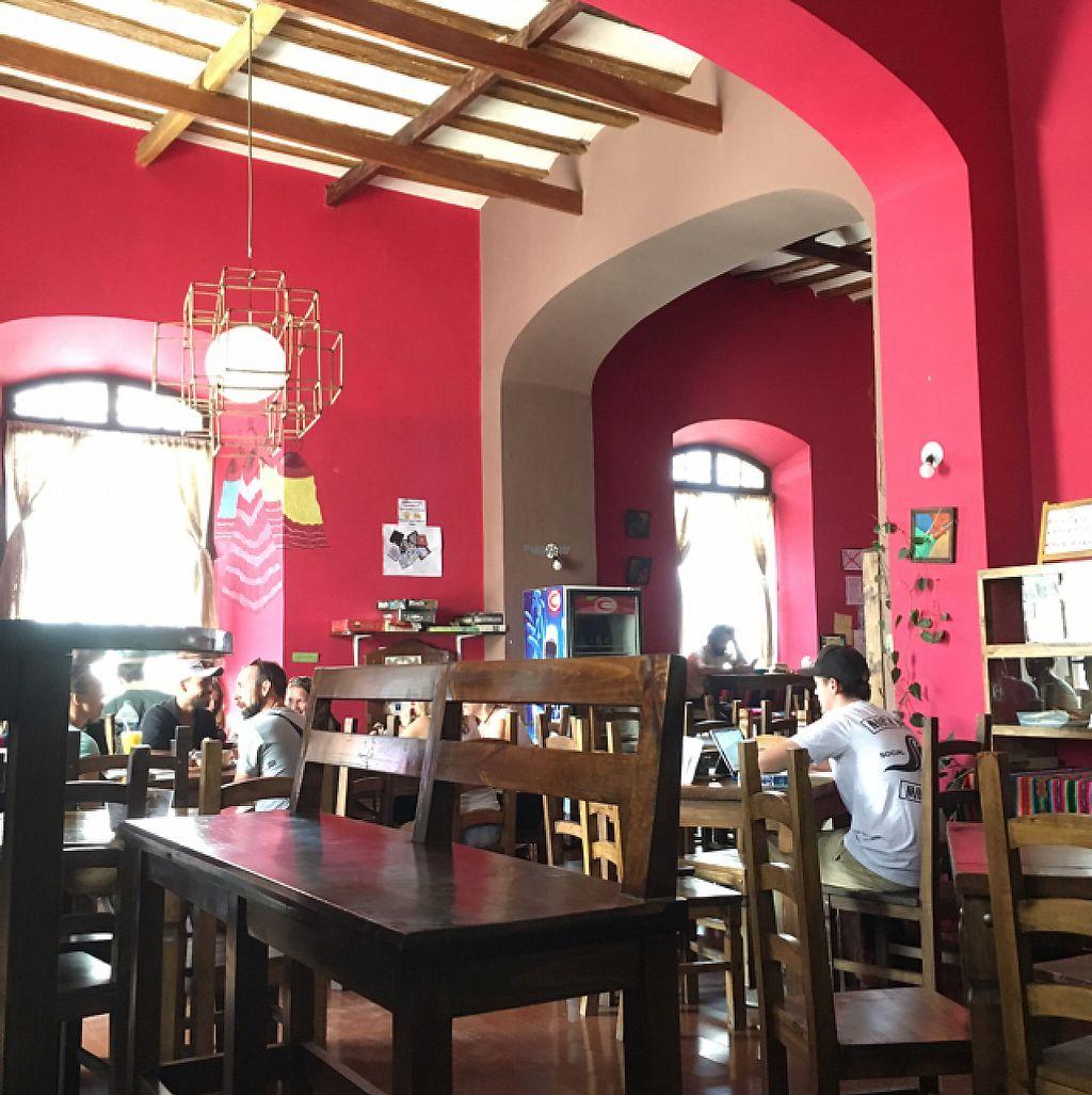 "Photo of Condor Cafe  by <a href=""/members/profile/EtaCarinae"">EtaCarinae</a> <br/>Condor <br/> December 4, 2016  - <a href='/contact/abuse/image/37900/197291'>Report</a>"