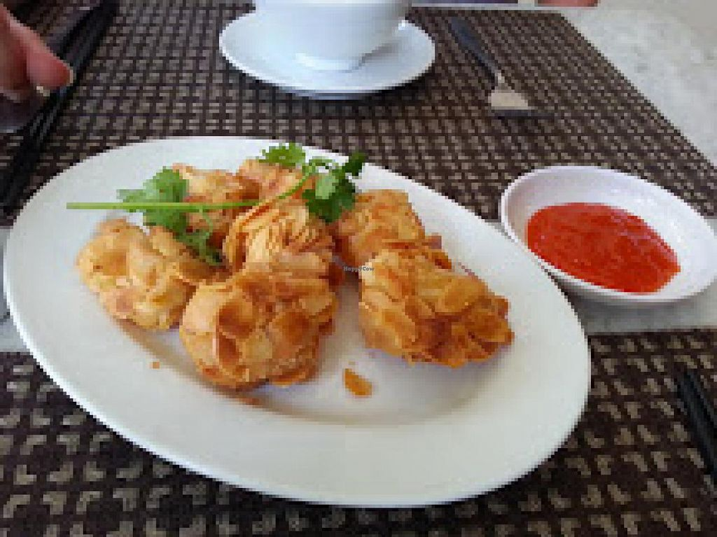 """Photo of CLOSED: Nirvana Tea House and Vegetarian Delights  by <a href=""""/members/profile/Miggi"""">Miggi</a> <br/>Almond crusted tofu starter <br/> January 17, 2015  - <a href='/contact/abuse/image/37957/90550'>Report</a>"""