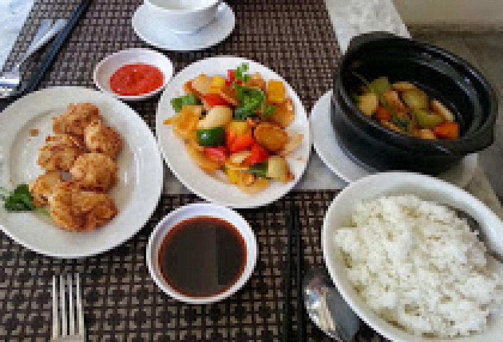 """Photo of CLOSED: Nirvana Tea House and Vegetarian Delights  by <a href=""""/members/profile/Miggi"""">Miggi</a> <br/>Meal at Nirvana: almond tofu, 'chicken' with cashews, tofu hotpot, rice <br/> January 17, 2015  - <a href='/contact/abuse/image/37957/90551'>Report</a>"""