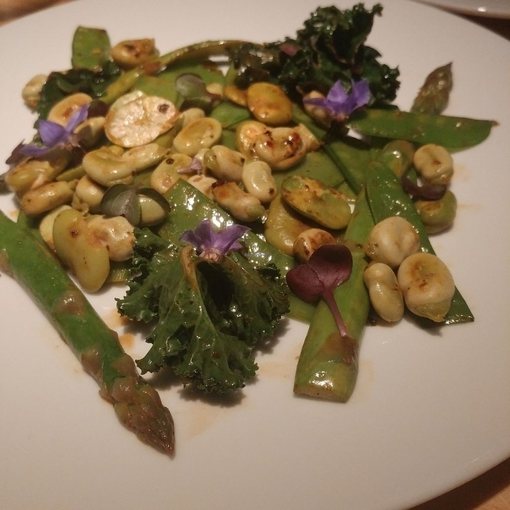 "Photo of Rasoterra Bistrot Vegetaria  by <a href=""/members/profile/LollyDuRand"">LollyDuRand</a> <br/>Fava beans with spring veggies <br/> May 7, 2017  - <a href='/contact/abuse/image/37964/256872'>Report</a>"