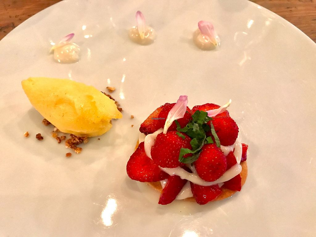 "Photo of Rasoterra Bistrot Vegetaria  by <a href=""/members/profile/NR105176"">NR105176</a> <br/>Strawberry tartlet, vanilla, shiso and orange ice cream.