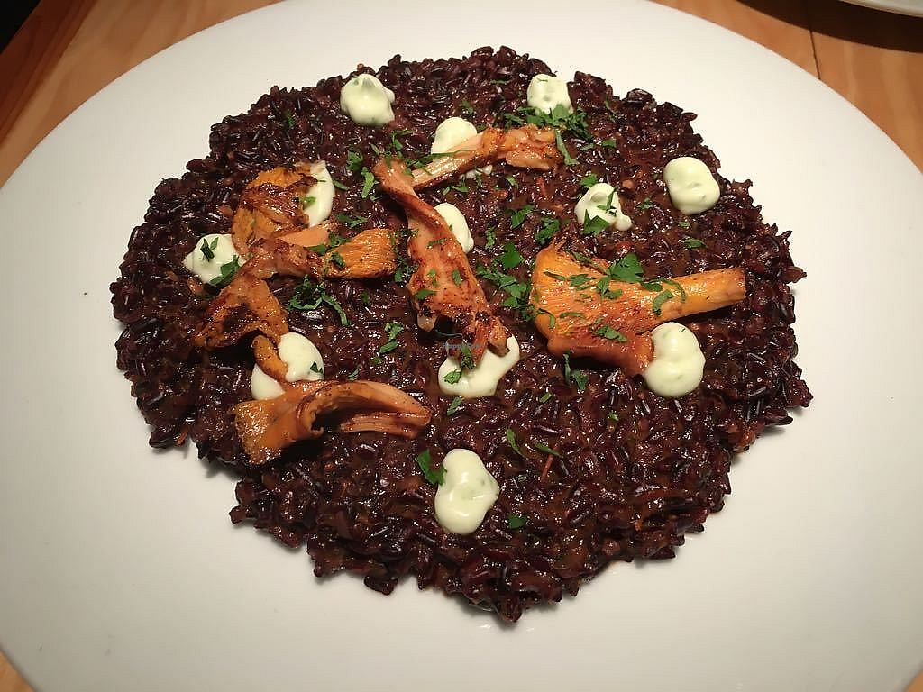 "Photo of Rasoterra Bistrot Vegetaria  by <a href=""/members/profile/martinicontomate"">martinicontomate</a> <br/>black rice with galician mushrooms and algae <br/> October 7, 2017  - <a href='/contact/abuse/image/37964/312737'>Report</a>"