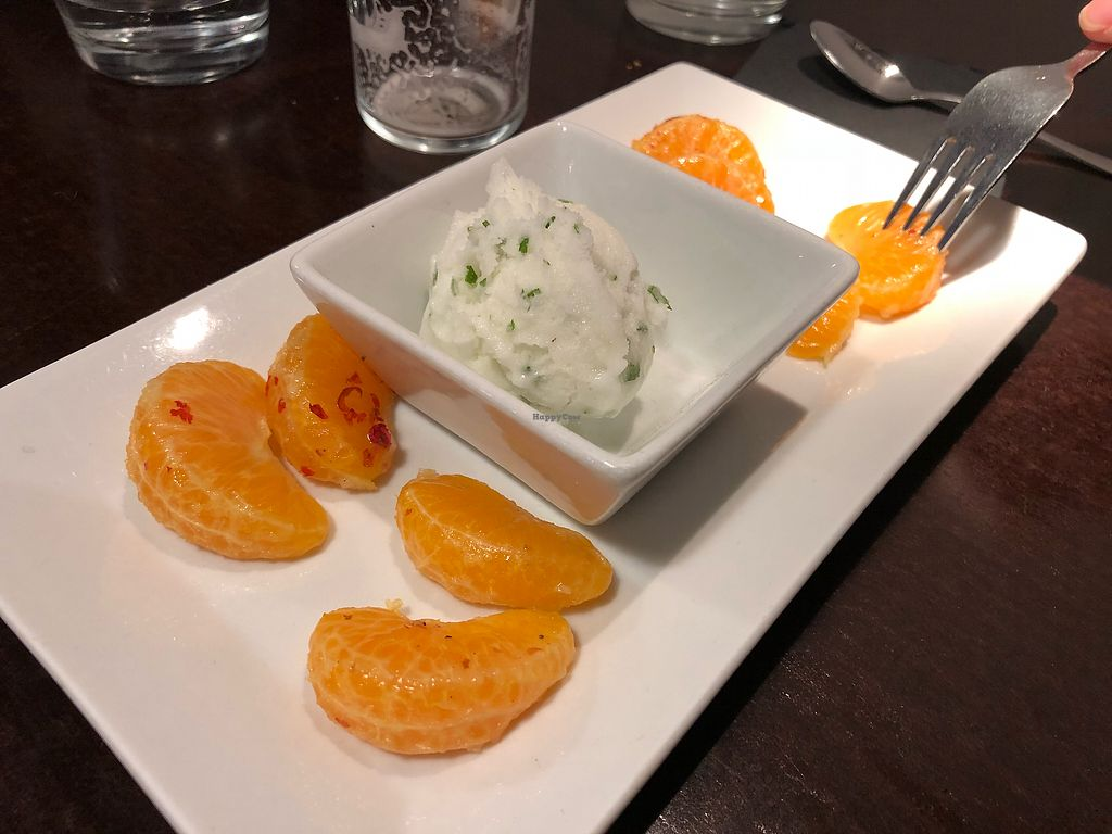 "Photo of Rasoterra Bistrot Vegetaria  by <a href=""/members/profile/Bea_lc"">Bea_lc</a> <br/>dull vegan sorbet from the lunch menu <br/> December 22, 2017  - <a href='/contact/abuse/image/37964/338135'>Report</a>"