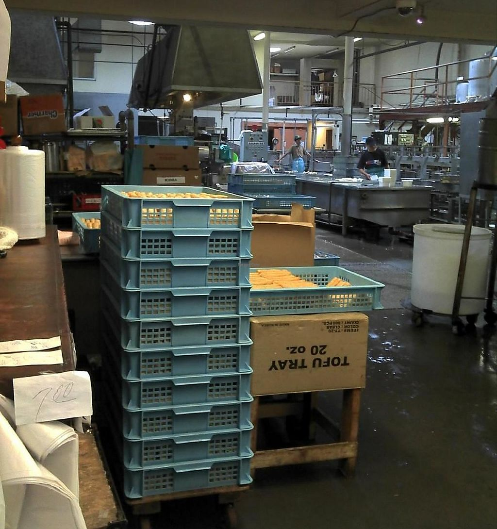 Photo of Aloha Tofu Factory  by krazykat <br/>Inside of the factory <br/> February 26, 2015  - <a href='/contact/abuse/image/37992/199269'>Report</a>