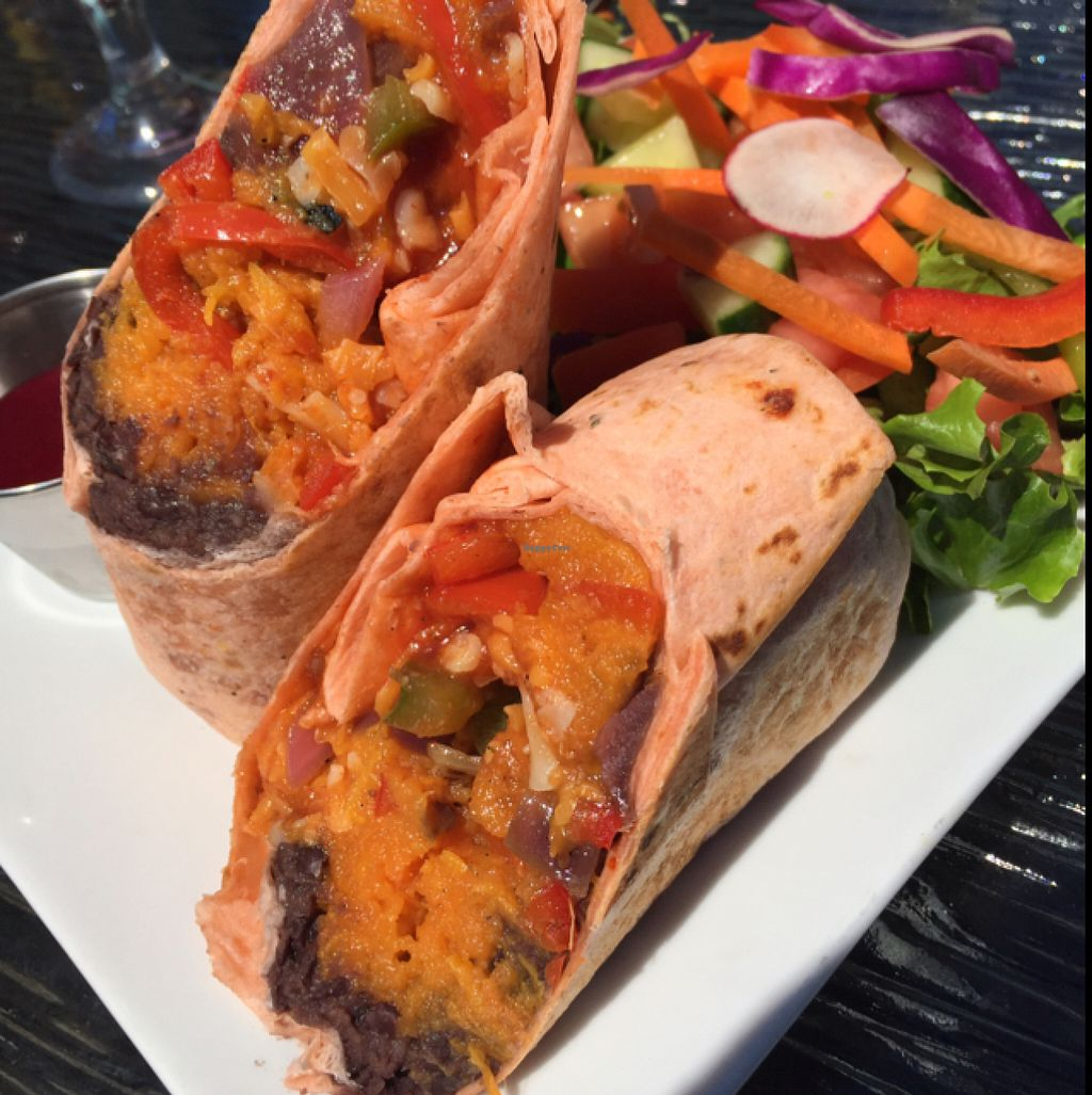 """Photo of Ancient Cedars Cafe  by <a href=""""/members/profile/AnnaNorman"""">AnnaNorman</a> <br/>sweet potato black bean burrito <br/> July 3, 2016  - <a href='/contact/abuse/image/38009/157442'>Report</a>"""